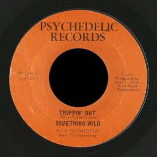 Something Wild Psychedelic 45 Trippin' Out